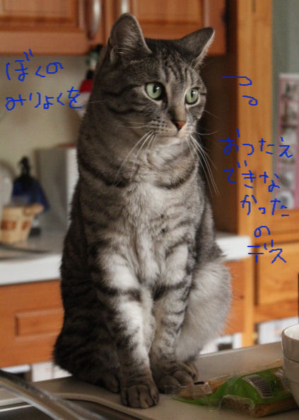 107-3ぼくのみりょく.JPG