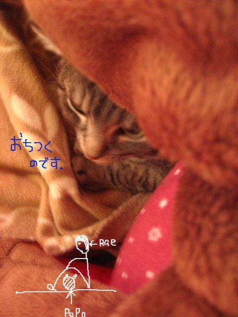 54-1さむい.JPG